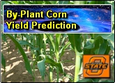 By-Plant Yield Prediction in Corn Production Systems