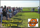 International Programs in Sensor Based Nitrogen Management