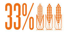 33% of wasted corn plants could be saved with vacuum planting.